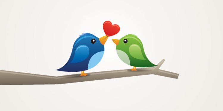 Birds In Love - A True Love Fairytale