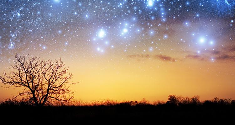 stars-in-heaven
